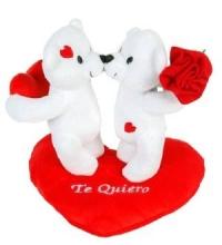 Pareja Ositos Flor y Corazon Te Quiero 19CM